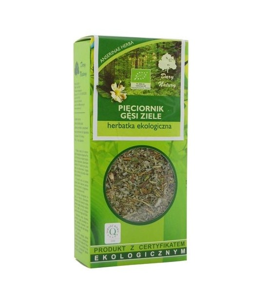 Pięciornik gęsi ziele Eko 50g herbatka