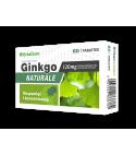 Ginkgo Naturale Pamięć i koncentracja