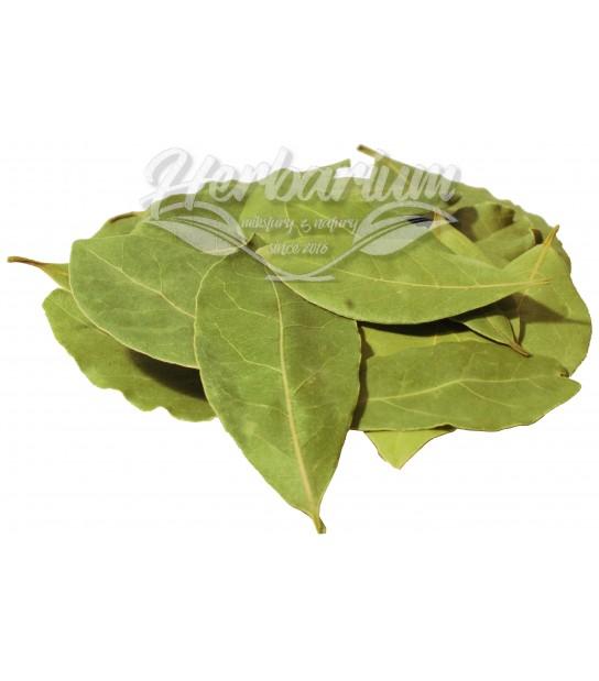 Liść Laurowy 50g Swieży, aromatyczny, duży